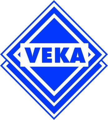логотип века