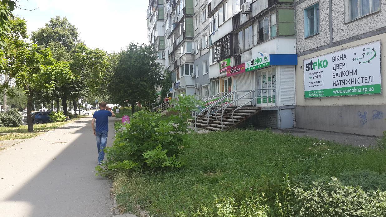 zadneprovskaya_66-2